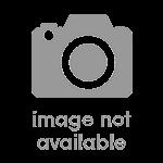 NorthPort logo