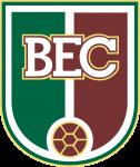 Blumenau W logo