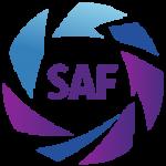 Primera D logo