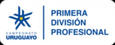 Primera Division - Apertura logo
