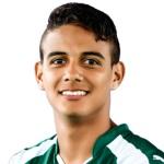 I. Ibañez Profile