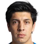 C. Meneses Profile