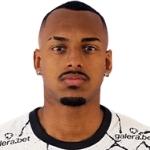 Raul Bicalho Profile