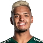 Gabriel Menino Profile