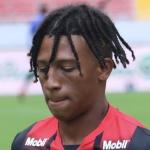 J. Alcócer Profile