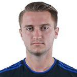 D. Mihailovic Profile