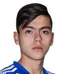 D. Ruiz Profile