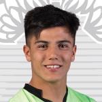 A. Tello Profile