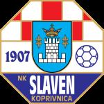 https://media.api-sports.io/football/teams/1018.png