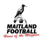 Home team Maitland logo. Maitland vs Weston Bears prediction and odds