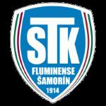 https://media.api-sports.io/football/teams/10545.png