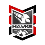 Home team Holland Park Hawks logo. Holland Park Hawks vs Rochedale Rovers prediction, betting tips and odds