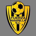 https://media.api-sports.io/football/teams/1160.png