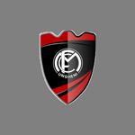 Home team FCM Ungheni logo. FCM Ungheni vs Victoria Bardar prediction, betting tips and odds