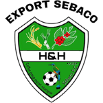 H&H Export logo