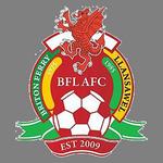 Home team Briton Ferry logo. Briton Ferry vs Swansea University prediction and tips