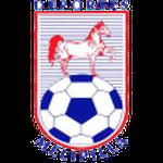 https://media.api-sports.io/football/teams/2339.png