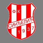https://media.api-sports.io/football/teams/2634.png
