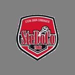 https://media.api-sports.io/football/teams/3905.png