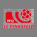 Away team Pinkafeld logo. Güssing vs Pinkafeld prediction and odds