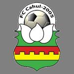 https://media.api-sports.io/football/teams/5374.png