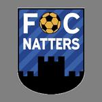 Away team Natters logo. St. Johann in Tirol vs Natters prediction and odds