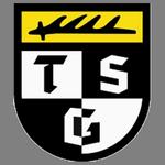 https://media.api-sports.io/football/teams/9360.png