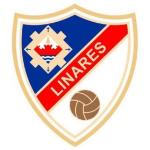 https://media.api-sports.io/football/teams/9398.png