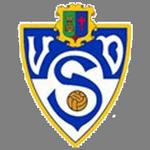 https://media.api-sports.io/football/teams/9414.png
