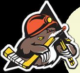 Soligorsk logo