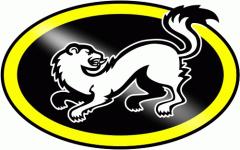 Karpat logo