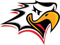 Vaasan Sport logo